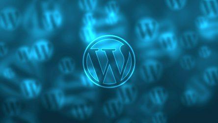 Twenty Seventeen WordPress Theme Demo